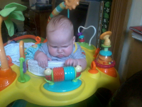 Alfie getting used to his new bouncer.